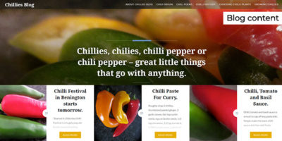 chilliesblog.wordpress.com